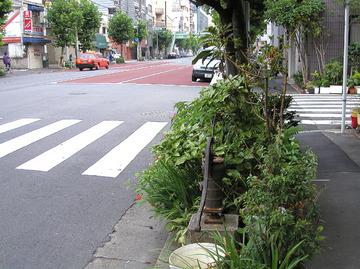 20060113