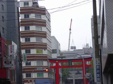 20061119